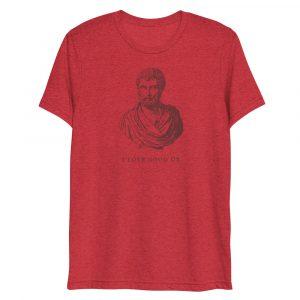 unisex-tri-blend-t-shirt-red-triblend-front-602c2e1b29b6b.jpg